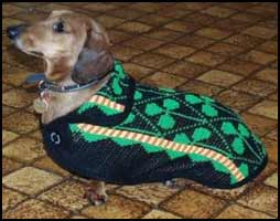 Luck Of The Irish Winter Dog Coat  American Made