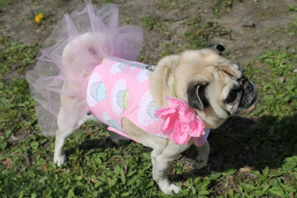 Cupcake Tutu Dress Made in USA