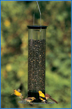 Droll Yankees Yankee Tipper Squirrel Proof Bird Feeder  Made in USA