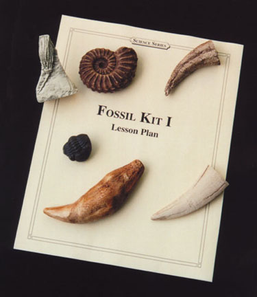 Educational Fossil Kit I