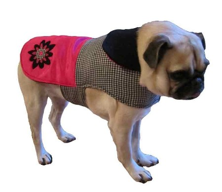 Lucy Dog Coat Made in America
