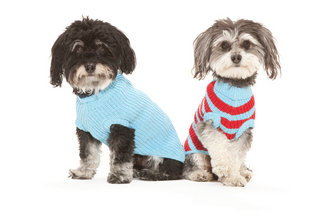 Reknitz� Dog sweaters  American Made