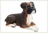 Brindle Boxer Pet Urn