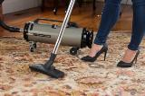 Professional Evolution 2-Speed Full-Size Canister Vacuum Made in America