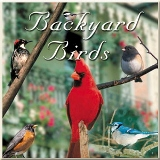 Backyard Birds CD American Made - Our Best Seller!