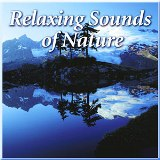 Naturescapes CD: Relaxing Sounds of Nature Made in America