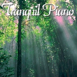 Naturescapes Tranquil Piano CD American Made