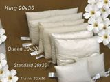 Organic <b>Standard Size </b> Pillows, Wool/Cotton