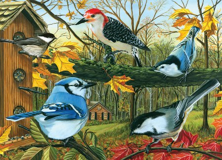 Blue Jay and Friends 1000 piece Puzzle Made in America