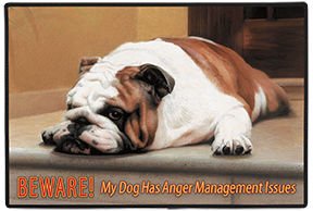 Beware! Anger Management Dog Indoor/Outdoor Doormat American Made