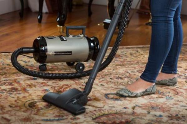 Professional Evolution Compact Canister Vac Made in USA