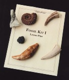 Educational Fossil Kit I Made in USA