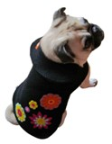 Lola Dog Coat Made in America