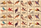 Memory Tiles Made in USA, Backyard Birds