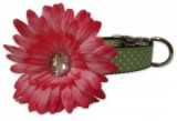 Collar with Flower American Made