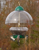 Droll Yankees Squirrel Resistant & Small Bird Feeder  American Made